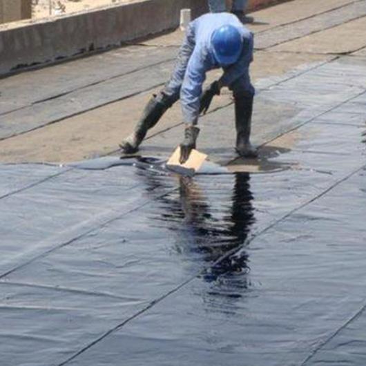 Basadi Waterproofing
